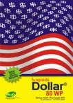 DOLLAR - POSTER 3_resize